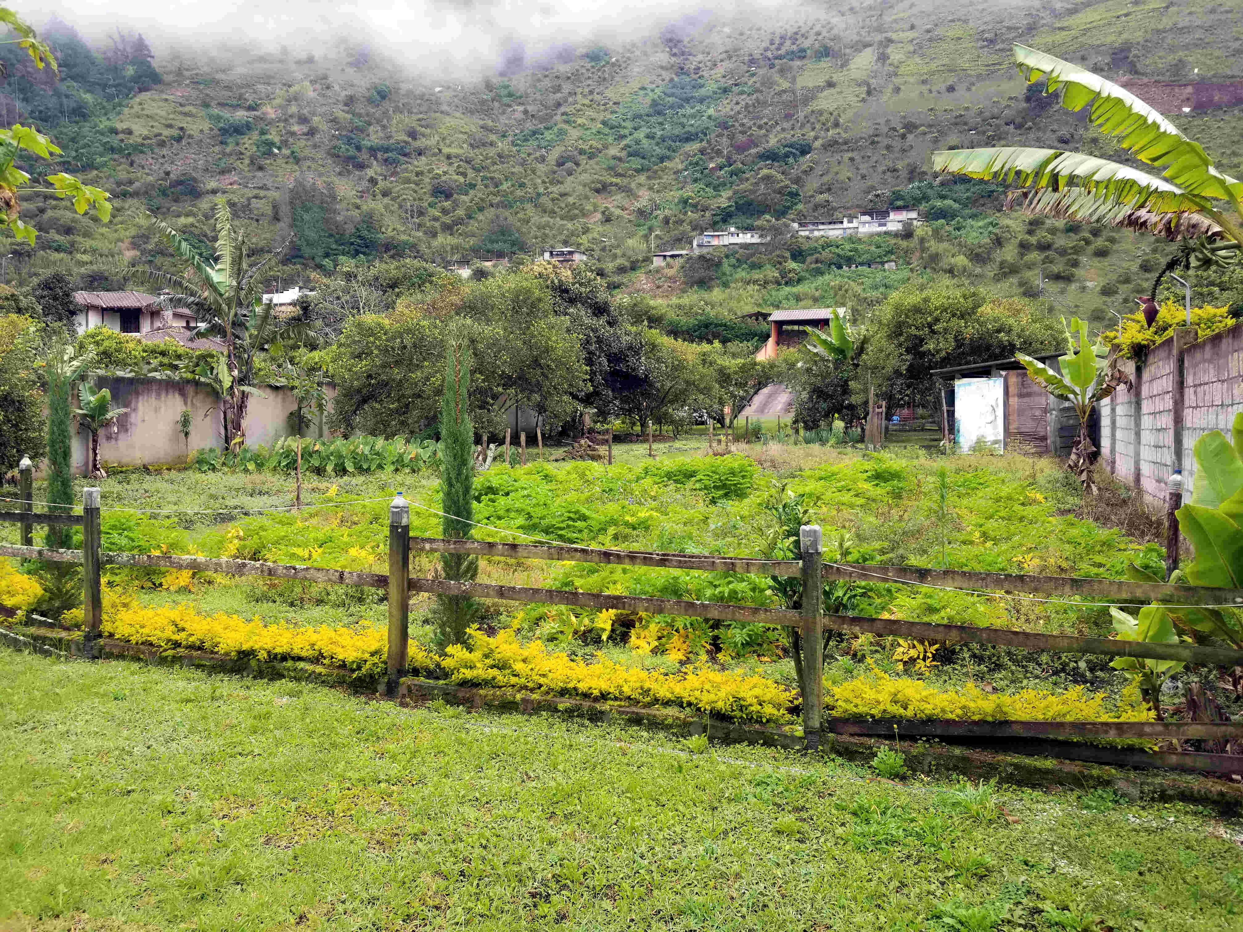 Property where we stayed in Banos Ecuador Mark Beneke